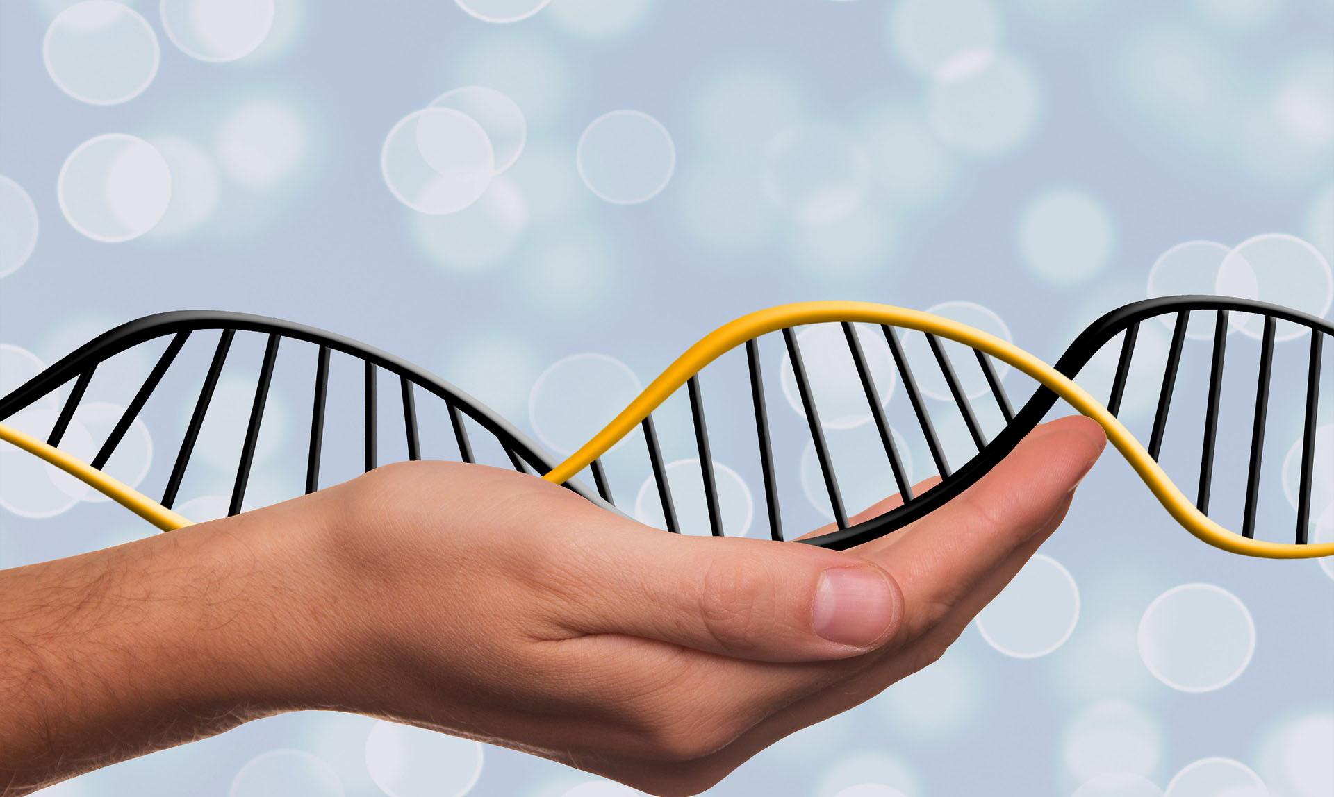 Ljudska DNK povezana s jednim davnim egzodusom iz Afrike