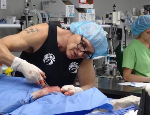 "Nova epizoda serije ""Dr Džef: Veterinar Stenovitih planina"" na Animal Planet kanalu"