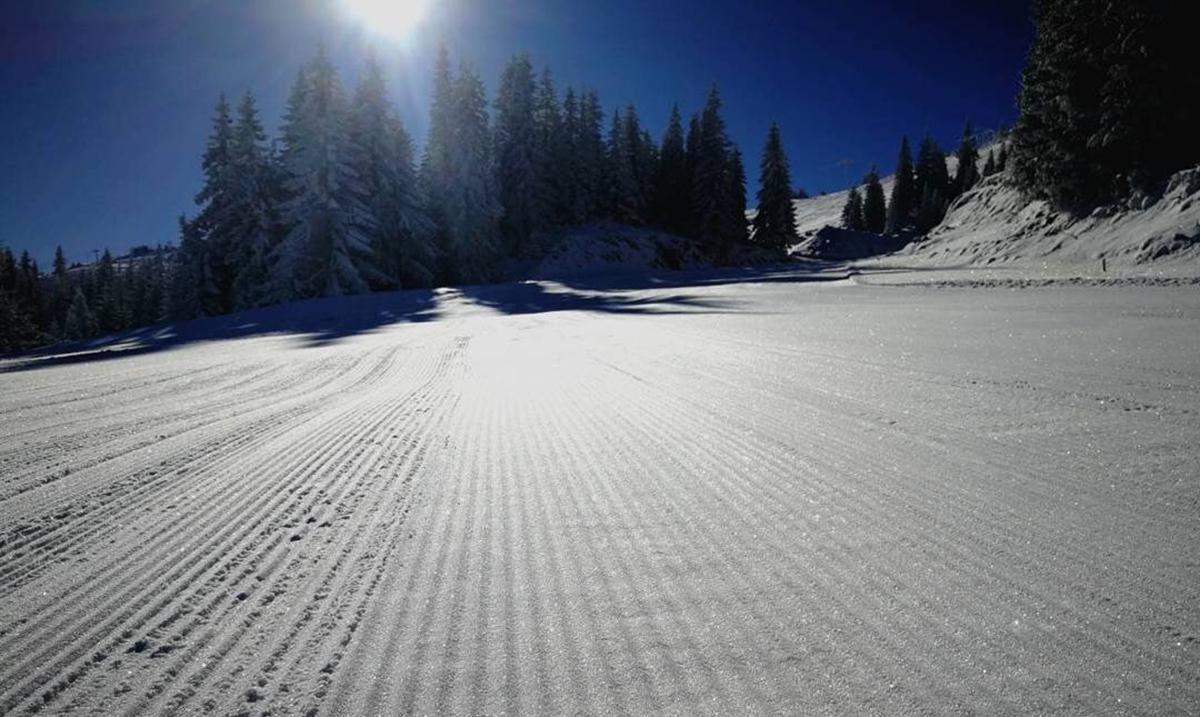 Austrijska skijašica Ana Fajt završila karijeru