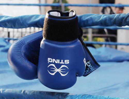 Dan boksa 14. avgusta u Nišu