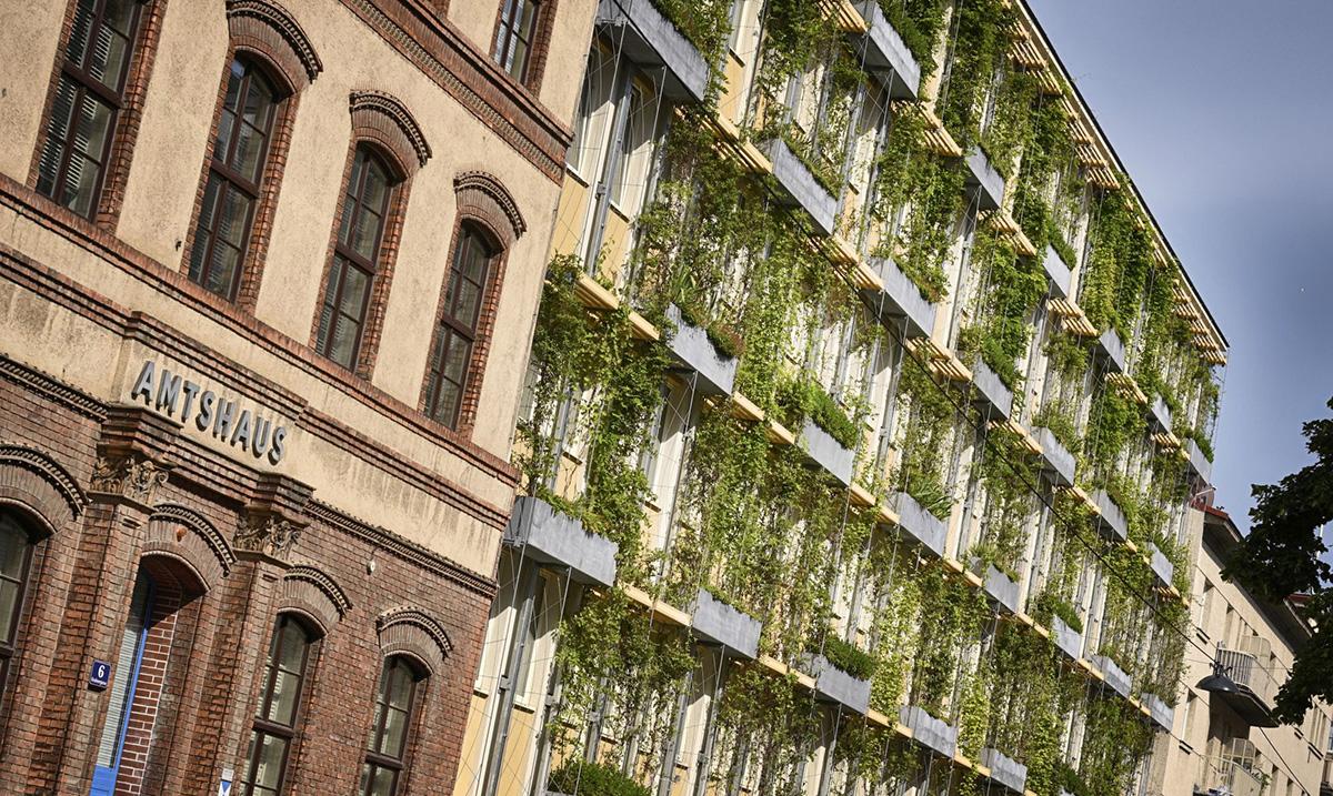 Zelene fasade u borbi protiv letnje vrućine