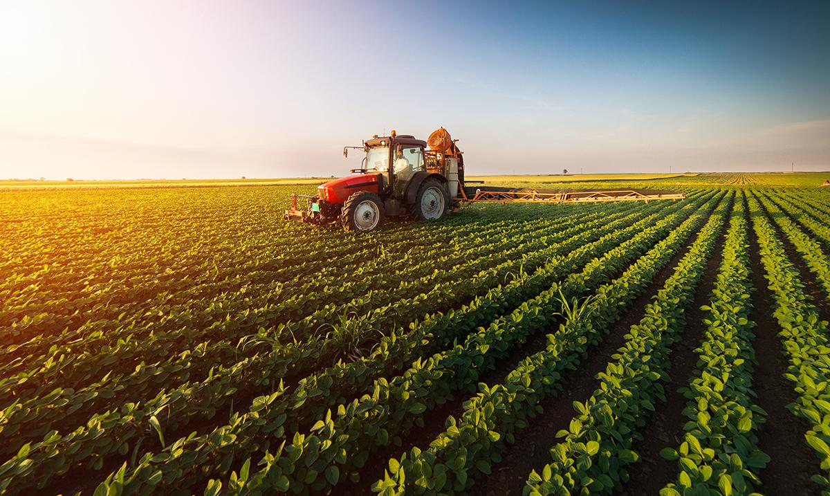 Prehrambena industrija Mađarske ima 25% nacionalnog BDP-a